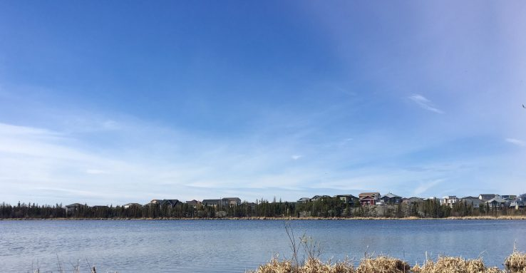 Niven Lake in foreground with bright blue sky overhead, across the lake rows of houses and trees are seen